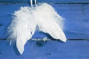124003726 angel wings
