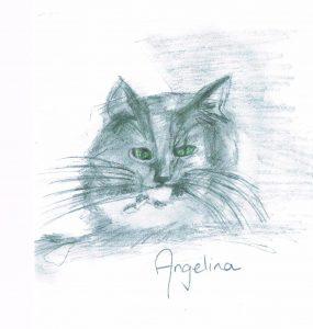 Little Angelina