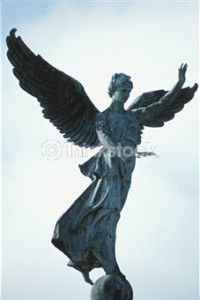 Angel 87569239